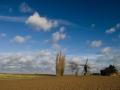 Wind.Mill